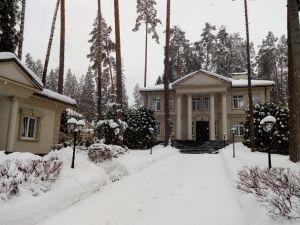 Обследование частного дома в Московской области перед покупкой